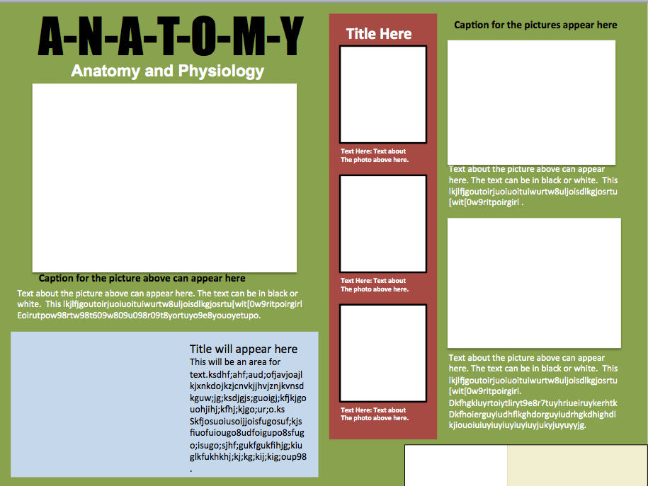 informational poster template design 1 instructional